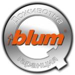 blum_icon